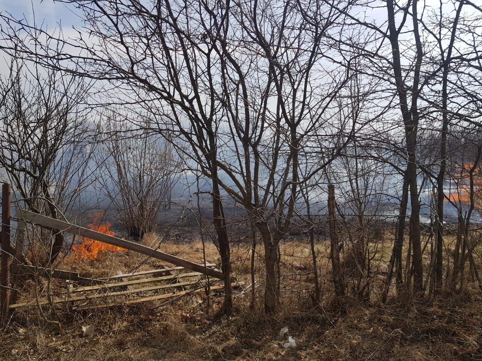 Două case  din Răcari- Mavrodin, cuprinse de flăcări după ce au dat foc vegetaţiei uscate