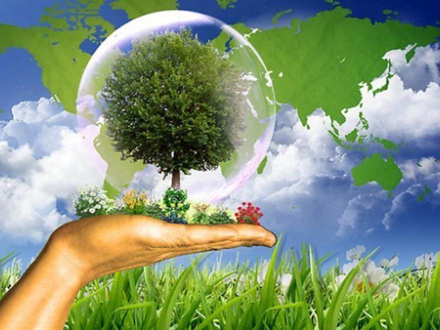 RASEDA ENVIRO vă ajută să evitați situațiile în care se pot aplica amenzi conform OUG 195/2005 privind protecția mediului