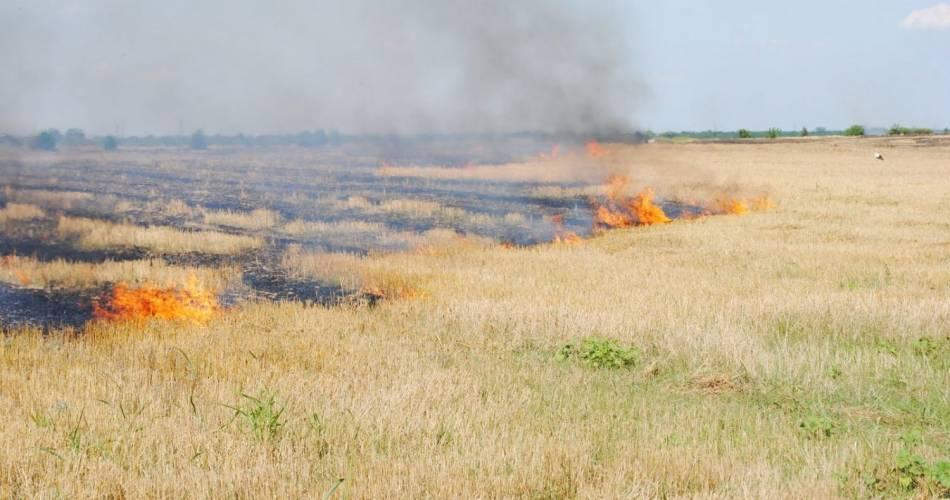 Prevenirea incendiilor pe timpul campaniei agricole de vară