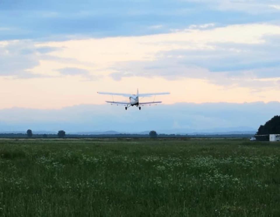 Acțiune de dezinsecție aeriană în comuna Corbii Mari
